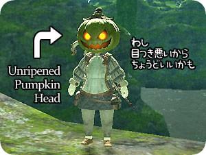 unripened pumpkin head